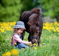 terapia asistida animales activa psicologia
